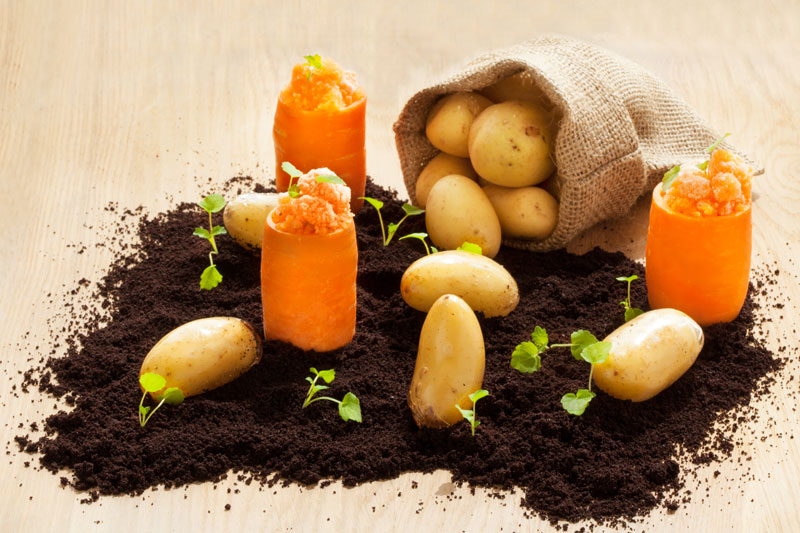 O κήπος των λαχανικών στο  «Funky Gourmet» - Χρυσοί Σκούφοι