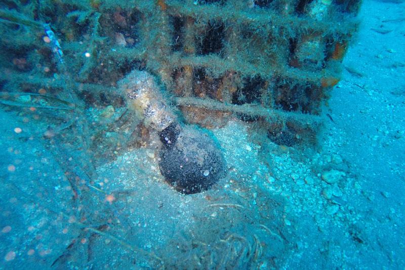 Τι συμβαίνει σ' έναν «Θαλασσίτη» όταν παλιώνει μέσα στη θάλασσα; - Χρυσοί Σκούφοι