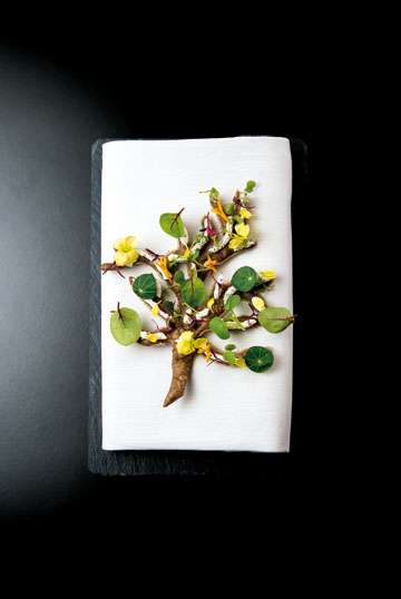 Yψηλή vegetarian κουζίνα στη «Hytra»