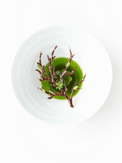 Conceptual gastronomic art σε σπεσιαλιτέ με vegetarian απόχρωση στο «Geranium».