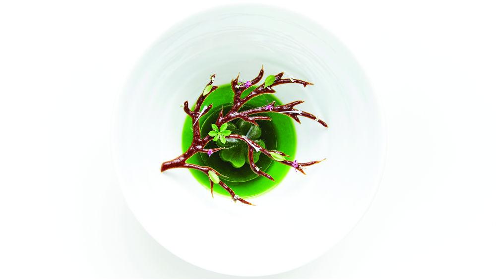 Καλλιτεχνική αναπαράσταση της γεύσης του δάσους στο «Geranium»