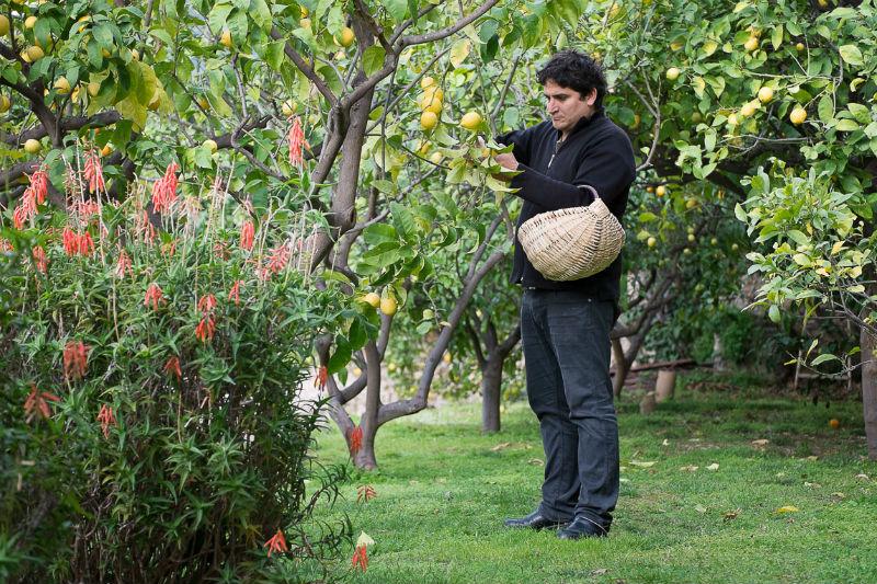 Mauro Colagreco: «Η γη με τραβάει σαν μαγνήτης, με έμαθε να βλέπω αλλιώς τη ζωή» - Χρυσοί Σκούφοι